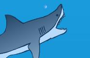 Aç Köpekbalığı Oyunu