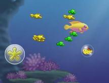 Balık Besleme Oyunu