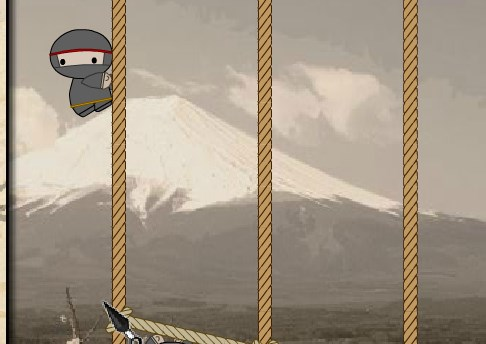Cesur Ninja Halatı