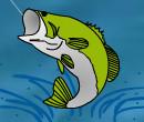 İskele Balıkçılığı