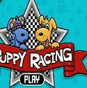 Mini Köpek Yarışı