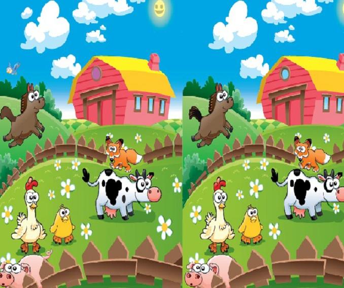 Mutlu Çiftlik Farkları