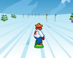 Usta Snowboardcu Ayı