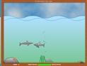 Yalnız Köpekbalığı